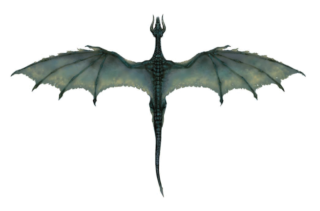 Flying Dragon Transparent Image