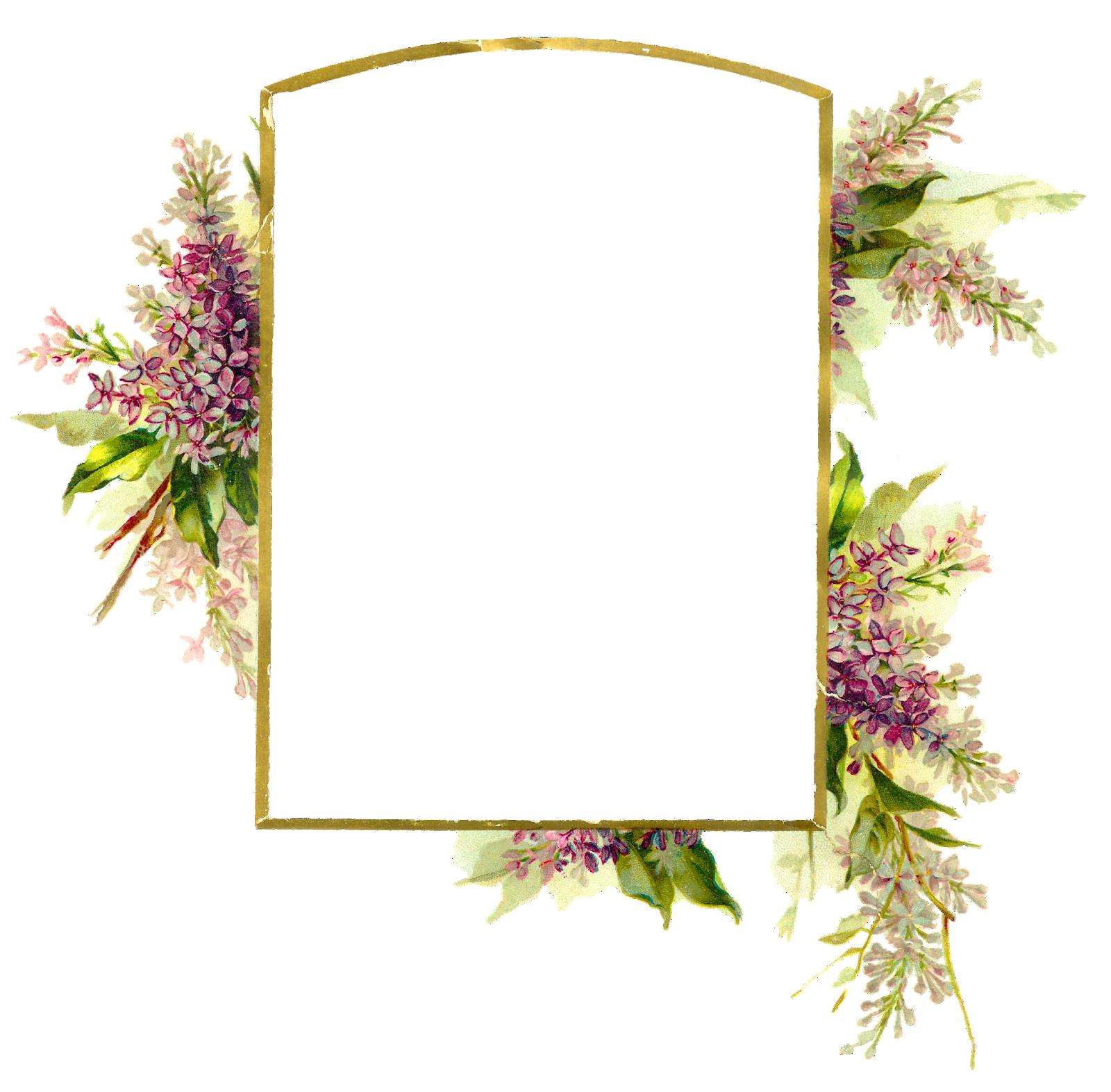 Cadre Floral PNG Fond